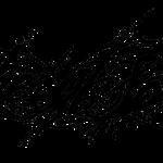 Logo schwarz einzeillig freigestellt